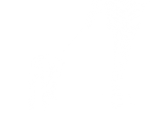 An illustration of someone walking a dog
