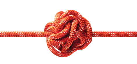 Close-up of knot