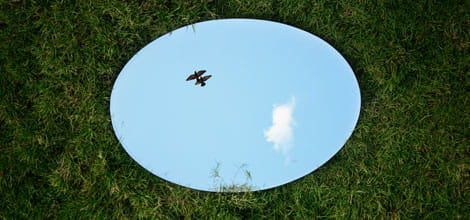 Mirror on grass reflecting the sky. Photo by Jovis Aloor on Unsplash